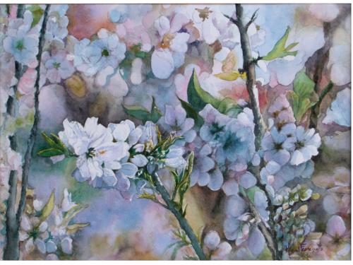 TCUMFL1612, Flores de almendro, 55X40, 20161227 (2)-R1