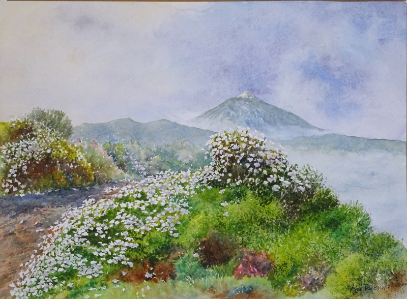 TCUMFL1701  Flores en Las Cañadas del Teide. 67X49  20170322 (1)-R